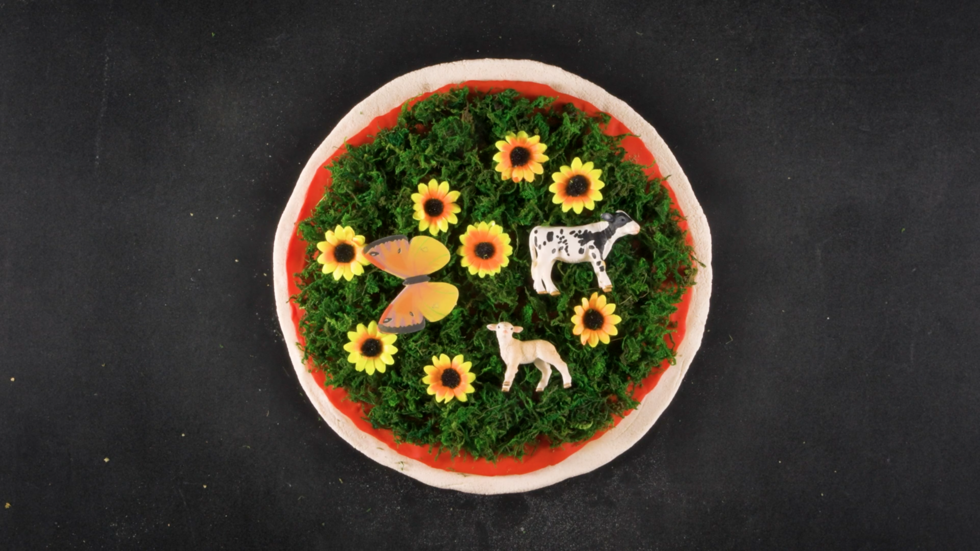animo-film-nature-and-pizza
